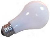 12 Volt Screw Light Bulb 50w