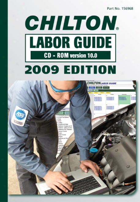 Chilton 2009 Labor Guide (cd-rom)