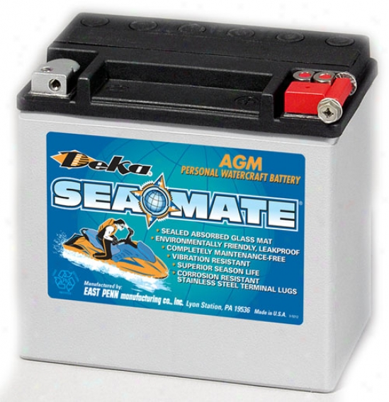 Deka Power Sports Etx16l Agm Battery