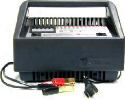 Deluxe Battery Starter/charger (50/10/2 Amp)