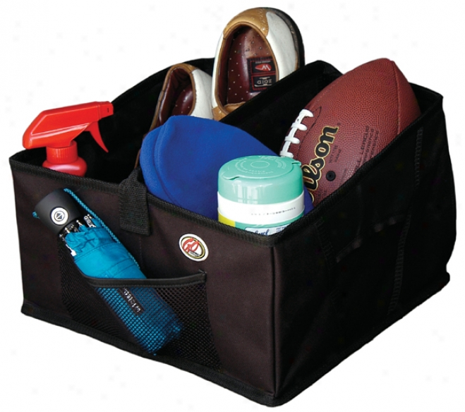 Reach Gear? Trunk Organizer