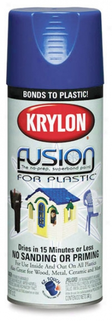 Krylon Fusion Spray Paint For Plastic (12 Oz.)