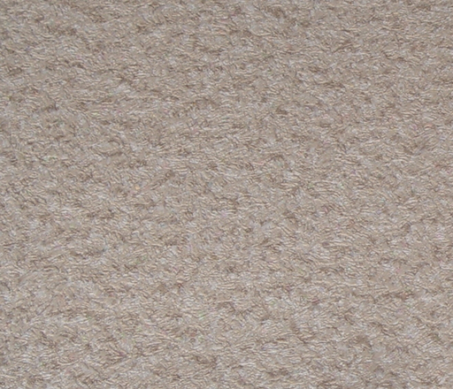 Speckdeck? Rollout Protecrive Flooring
