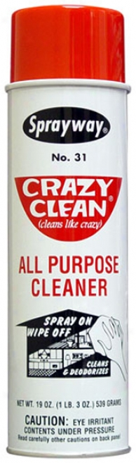Sprayway Crazy Clean All Purpose Aerosol Cleaner (19 Oz.)