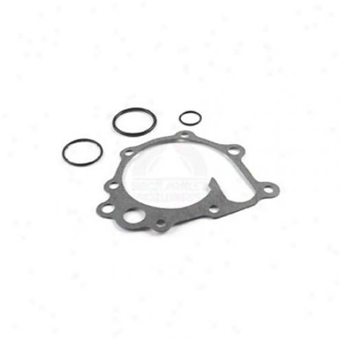 Beck/arnley Water Pump Gasket-  039-4078