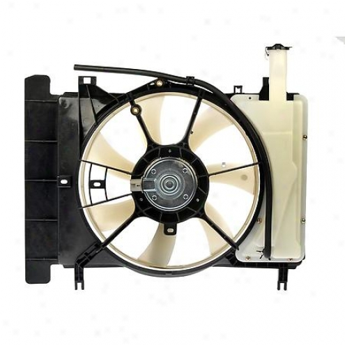 Dorman Radiator Fan Ball - 620-549