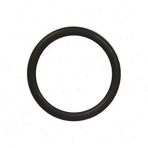 Felpro Distributor Gasket/o-ring - 419