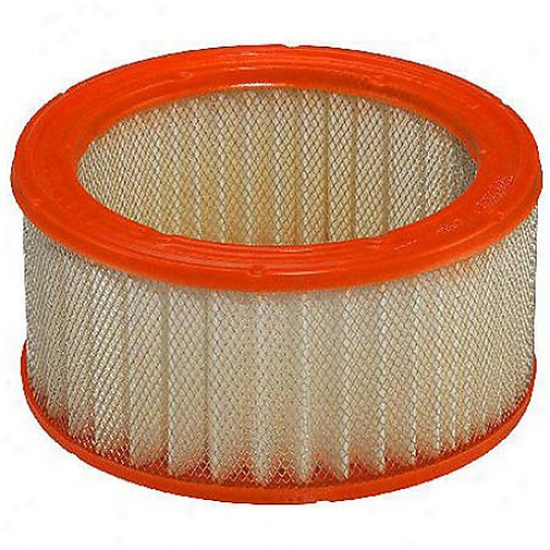 Fram Extra Guard Air Filter - Ca372
