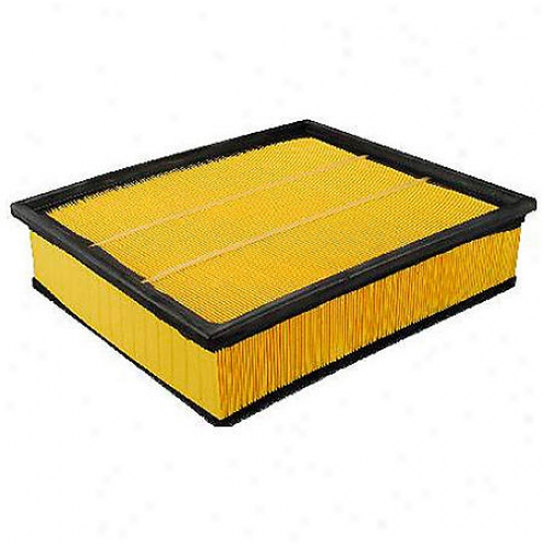 Fram Extra Guard Air Filter - Ca5876