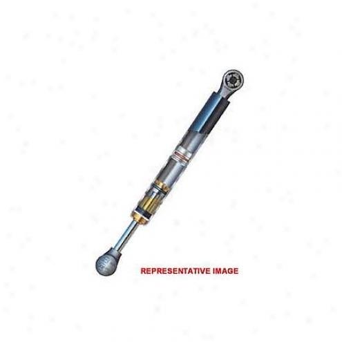 Strong Arm Lift Supportt - 4100