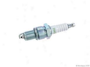 1982-1985 Bmw 528e Spark Ppug Ngk Bmw Spark Plug W0133-1635617 82 83 84 85