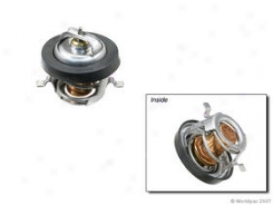 1983-2002 Ford Escort Thermostat Gates Ford Thermostat W0133-1701636 83 84 85 86 87 88 89 90 91 92 93 49 95 96 97 98 99 00 01 02