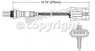 Acura  on 1996 1999 Acura Slx Oxygen Sensor Walker Products Acura Oxygen Sensor