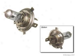 1999 Chevrolet Prizm Halogen Bulb Phoenix Chevrolet HalogenB ulb W0133-1637738 99