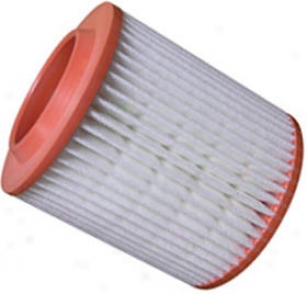 2004-2005 Audi A8 Quattro Air Filter Hastings Audi Air Filter Af1242 04 05