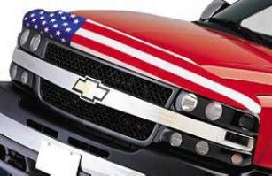 2004-2008 Ford F-150 Bug Shield Egr Ford Bug Shield 303179 04 05 06 07 08