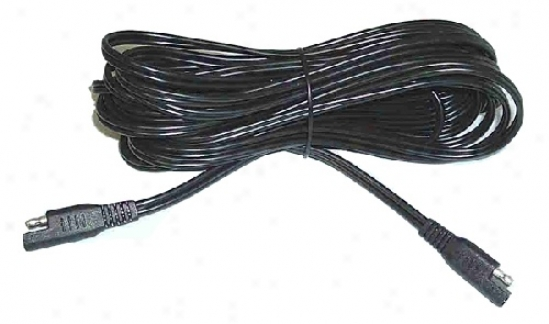 Battery Effeminate 12.5 Ft. Extension Lead