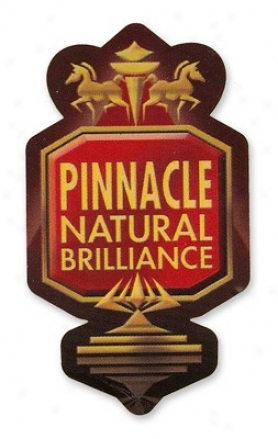 Pinnacle Logo Sticker - Smalp
