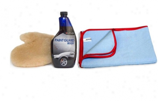 Ultima Autospa Car Wash Kit