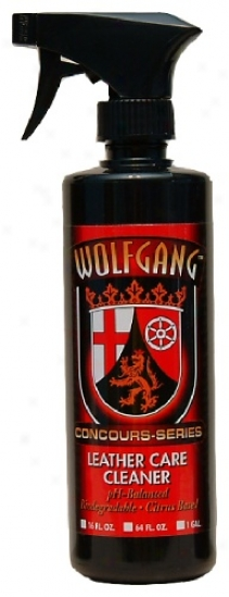 Wolfgang Leather Charge Cleaner