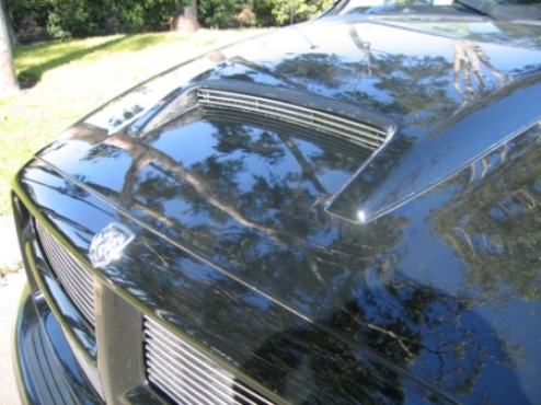 02-05 Dodge Ram 1500 T-rex Hood Scoop Grille Insert 20463