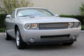 2009 Dodge Challenger T-rex Grille Insert 44415