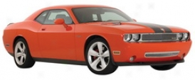 2009 Dodge Challenger T-rex Grille Set in 54415