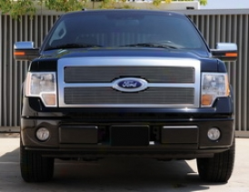 2009 Wade through F-150 T-rex Grille Insert 20567