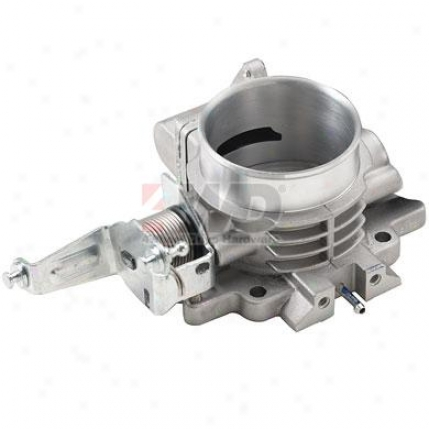 Hesco Throttle Body