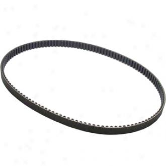 20mm Rear Drive Belt