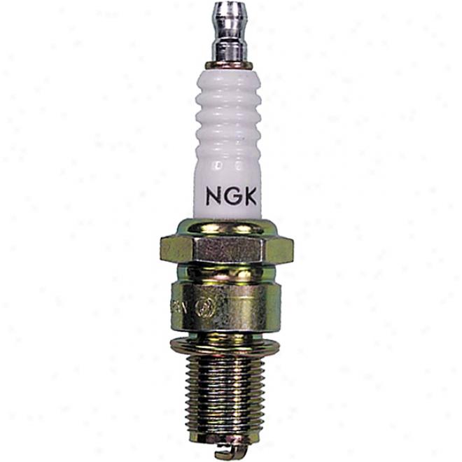 B9eg Solod - Spark Plug