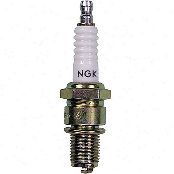 Br8eg - Spafk Plug