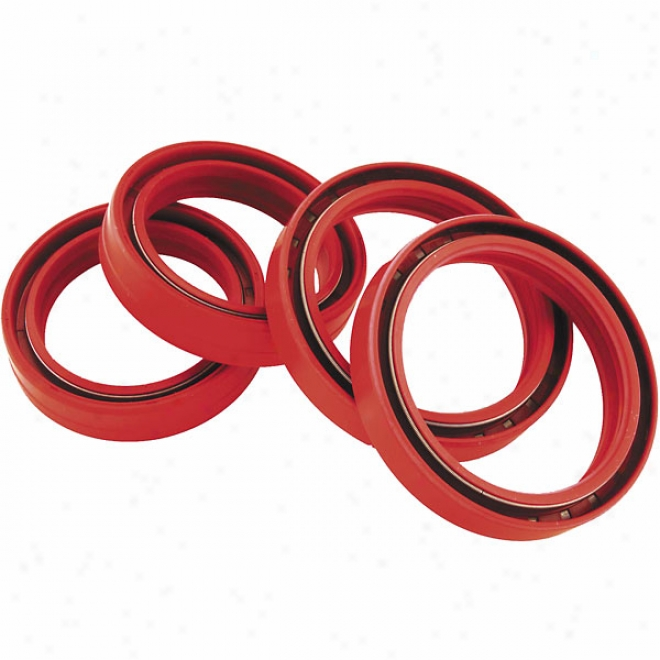 Fork And Dust Seal Kit