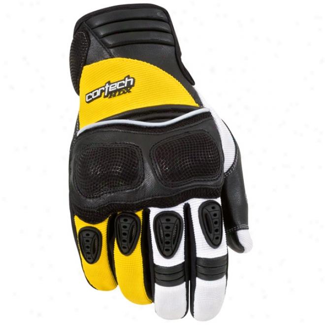 Hdx Gloves