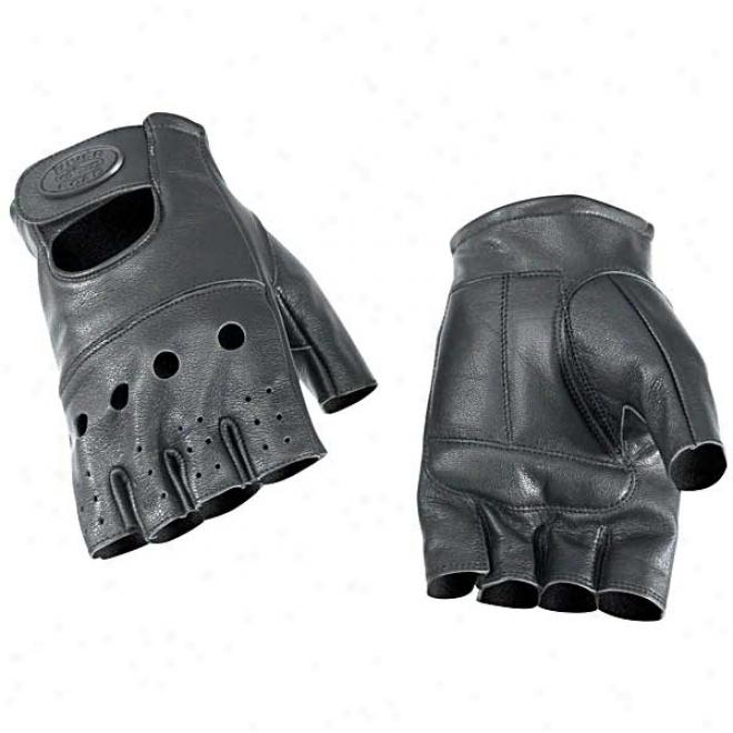 Hollister Gloves