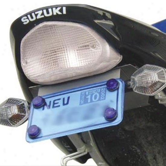 Integrated Led Taillight Kit