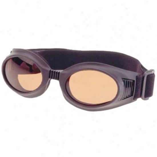 Max 360 Goggles