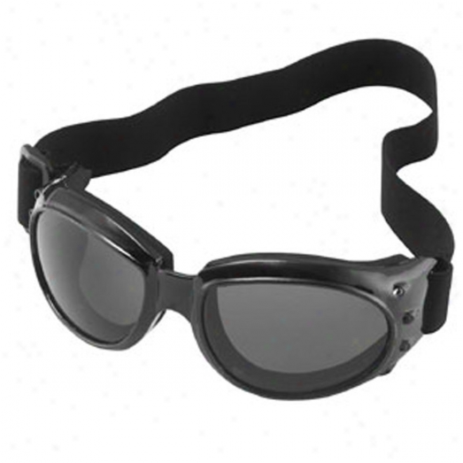 Max Extreme Goggles