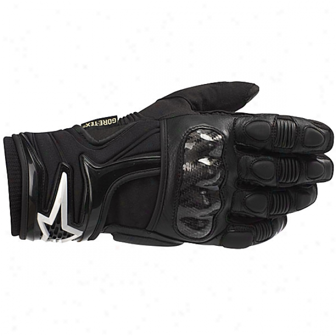 Polar Gore-tex Gloves