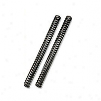 Road And Course Fork Springs