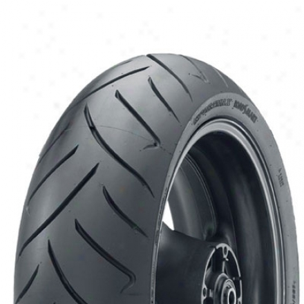 Roadsmart Sport Touring eRar Tire
