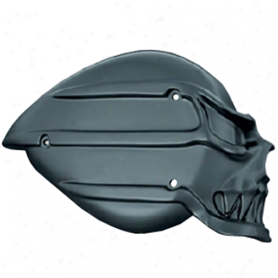 Satin Black Skull Air Cleaner Cover