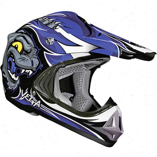 Youth Viper Jr. Wildcat Helmet