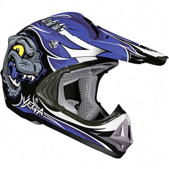 Youth Viper Jr. Wildcat Helmet