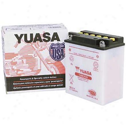 Yumicron 12v Battery