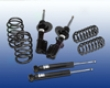 Ac Schnitzer Sport Suspension Kit Bmw E53 X5 3.0i 99-07