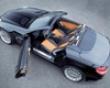 Carlsson Alloy Hood Fin Inserts Mercedes Slk-class R171 05-08