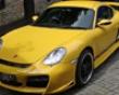 Nr Auto Gt Body Kit Porsche Boxstee 987 05+