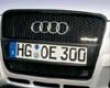 Oettinger Front Grille Audi A4 B7 06+