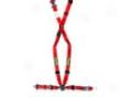 Schroth Racing Quick Fit Proo Red Lt Belt Mini Cooper 01-06